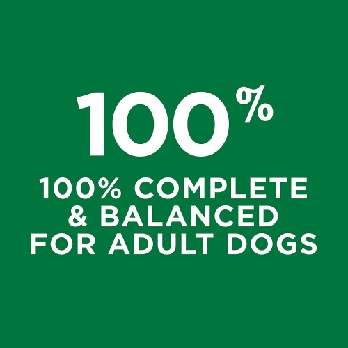 Purina Dog Chow Complete Adult Dry Dog Food -57 Lbs